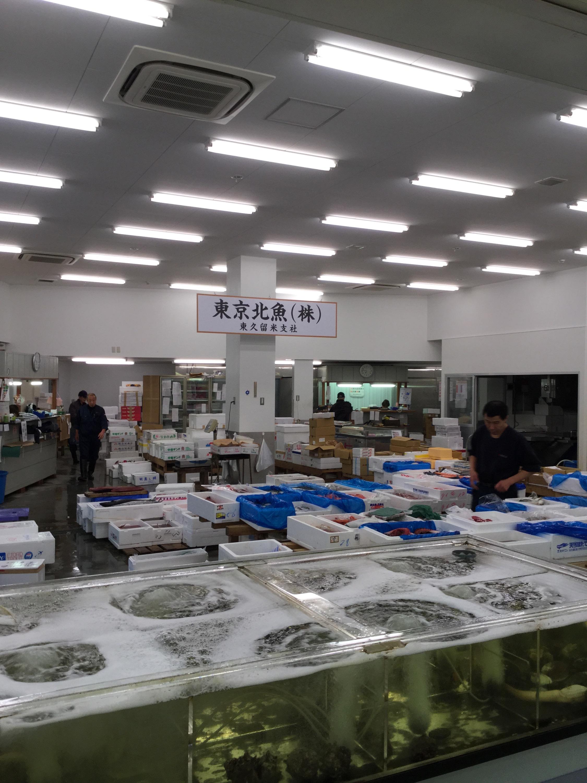 マグロ・鮮魚の東京北魚です‼️